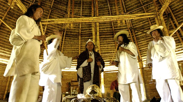 the kogi indians Los kogi: una tribu de la sierra nevadade sunta marta, colombia  south  american indians ever published in spanish, it may well serve as a model and.