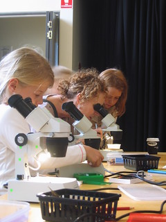 children instructing parents how to use the stereo microscopes | by scalefreenetwork