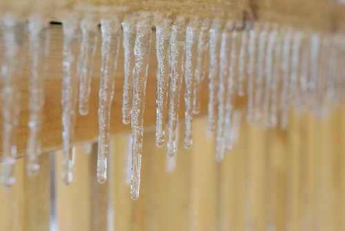 icicles hanging | by I Should Be Folding Laundry