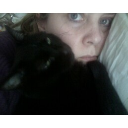 Cat Caregiver In Plymouth Uk
