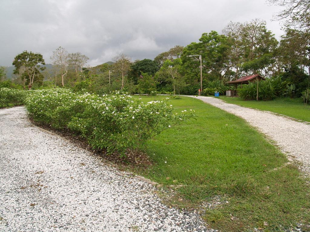 En el jard n bot nico y cultural de caguas puerto rico for Bodas en el jardin botanico de caguas