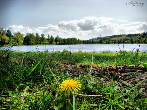 Sodertalje, Sweden 054 - Södermanland Lake | by Claudio.Ar