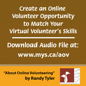 Create an online volunteer opportunity to match your virtu for Create a program online
