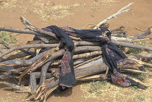 Pieces of cloth hold together a bundle of wood | by World Bank Photo Collection