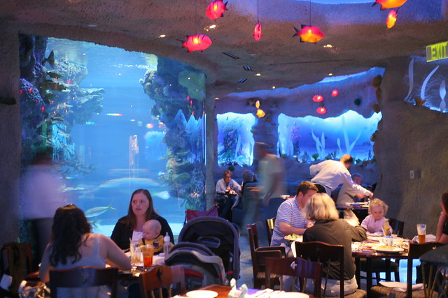 Opry Mills Aquarium Restaurant At Opry Mills Cliff