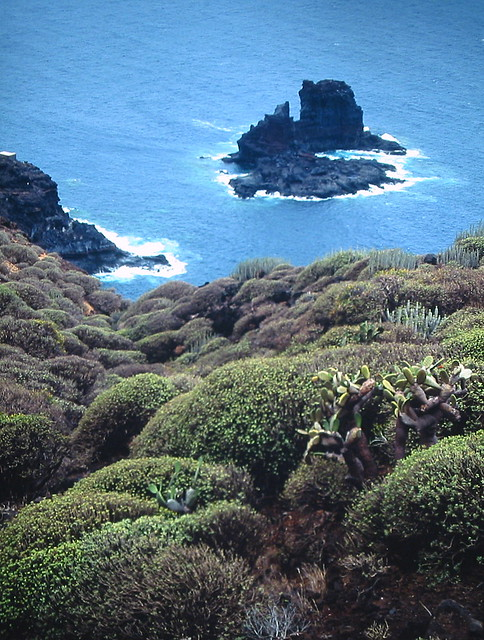 Canary Islands Weather November Averages