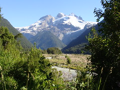 DSC03646 Looking up at El Tronador from our campsite on the Chilean side