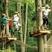 Tree Top Trekking Arbraska
