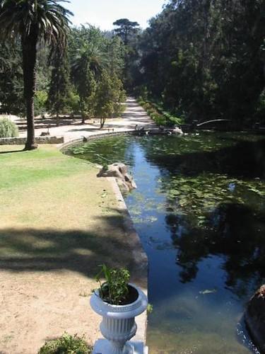 piscina laguna linneo jard n bot nico nacional vi a del