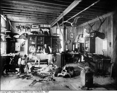 Taxidermy Shop around 1880 | by Smithsonian_Institution