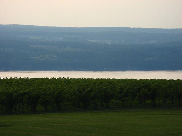 Seneca Lake Wine Tour Bus