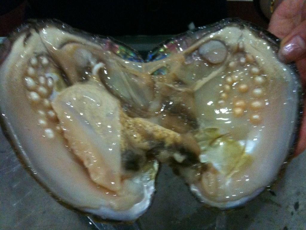 pearls inside a fresh water clam | Cangul | Flickr
