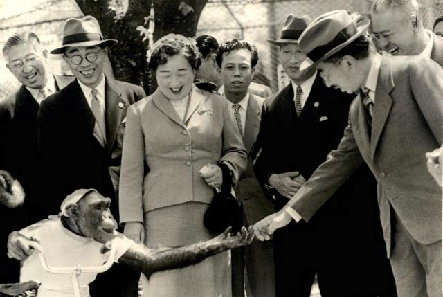 Susie The Chimp And Emperor Hirohito Do Quot The Bump Quot In Japa