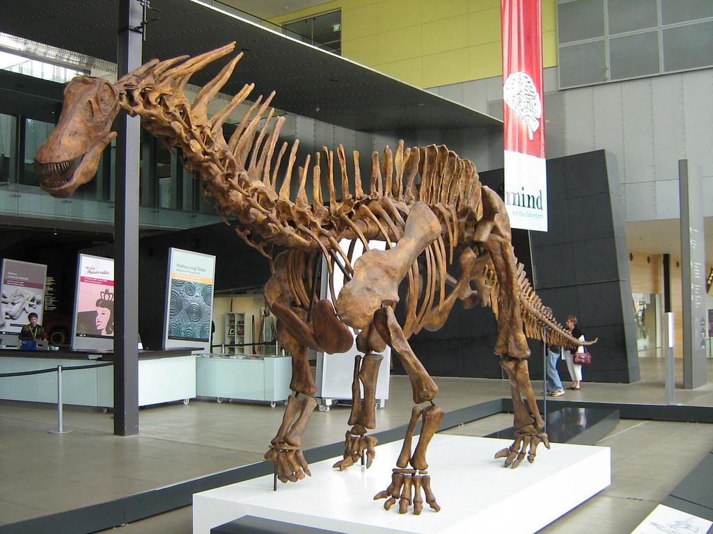 Amargasaurus Amargasaur sauropod dinosaur dinosaurs fossil ...