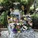July14-2008-Flowers-Back