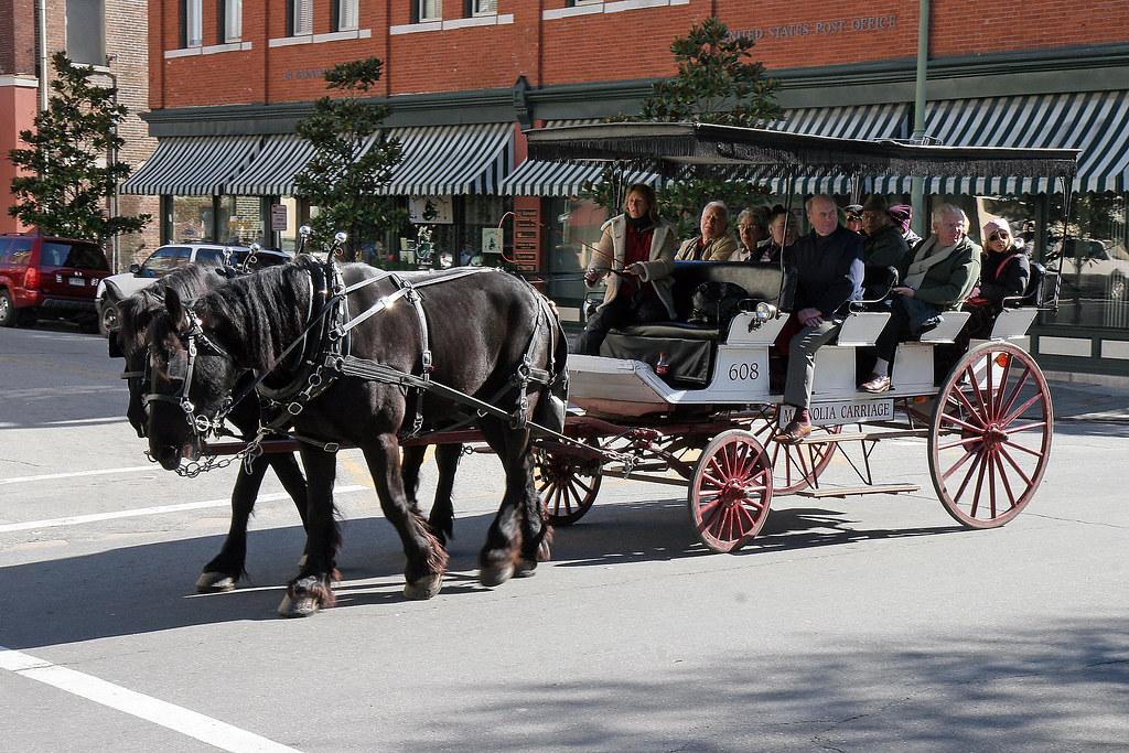 Savannah Georgia 08 Horse Drawn Carriage Ride Flickr