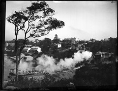 Lavender Bay with steam train | by Powerhouse Museum Collection