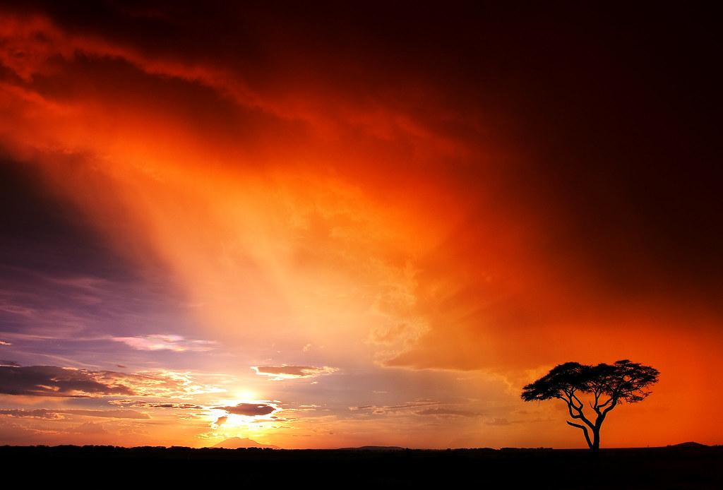 setting sun african caribbean - photo #5