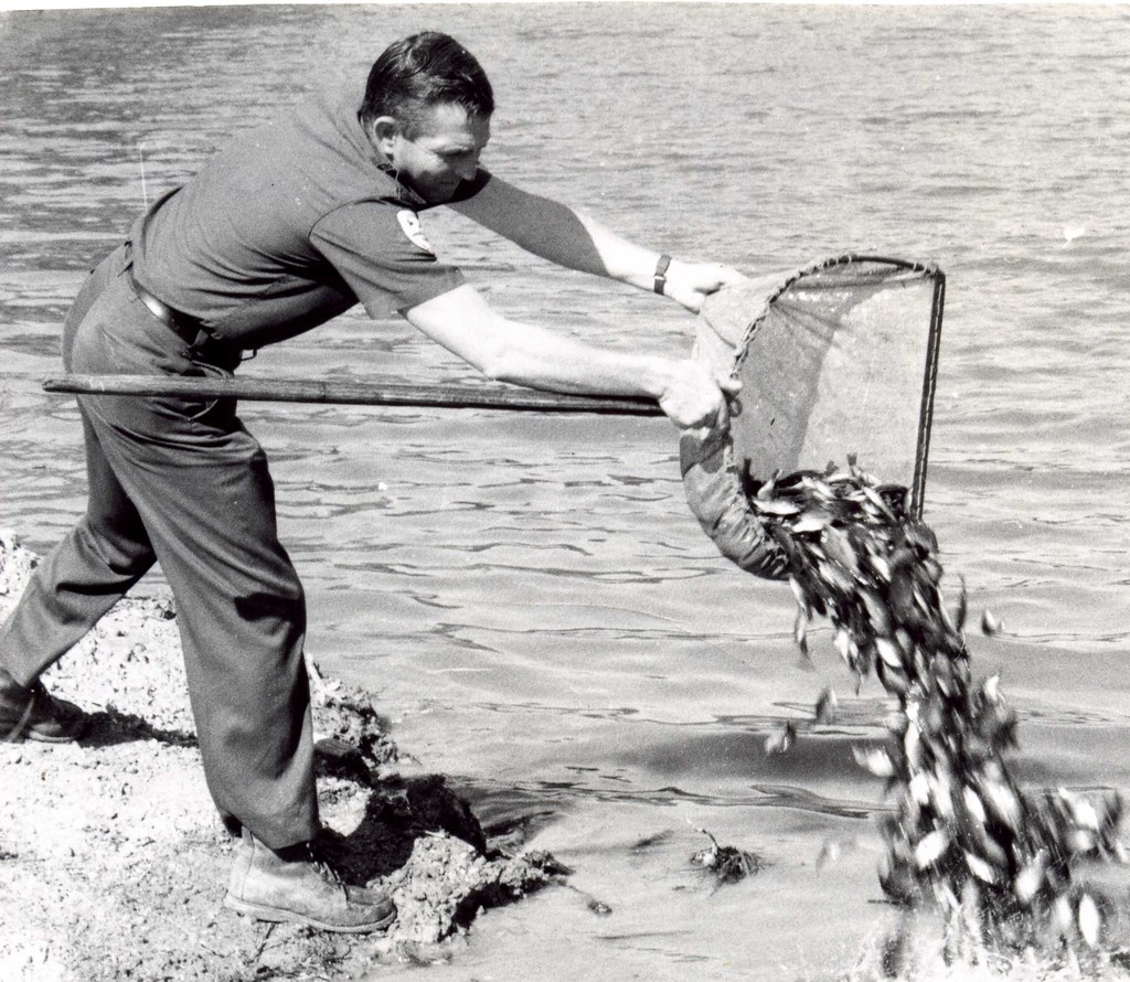 Field personnel stocking fish virginia department of for Va game and fish
