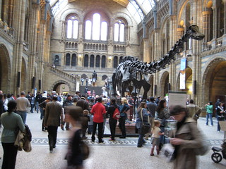 Natural History Museum | by Phillie Casablanca