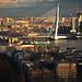 "Rotterdam Impressions: ""The Swan"""