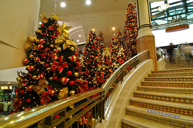 Myer Christmas Trees
