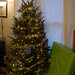 Christmas Tree-03806