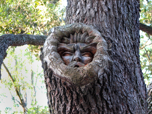 Tree spirit located at red fern village st simons