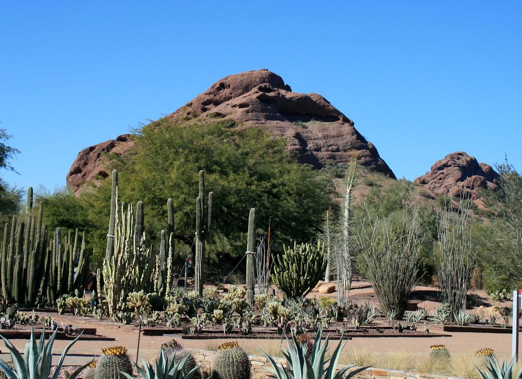 Papago Park, Desert, Phoenix, Arizona