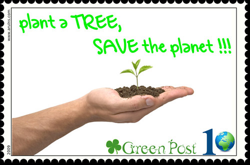 Essay on save trees and save life
