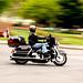 Happy Motorcycle day, Albany!