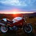 Ducati Monster (#46416)