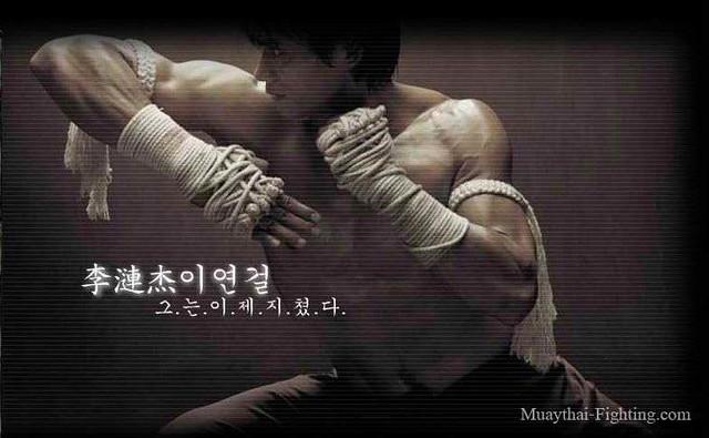 Muay Thai Wallpapers Tony Jaa 6 Jbdemon Flickr