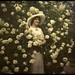 Woman standing in flowering bush