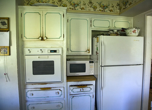 One regular oven, one microwave | by Elise Bauer