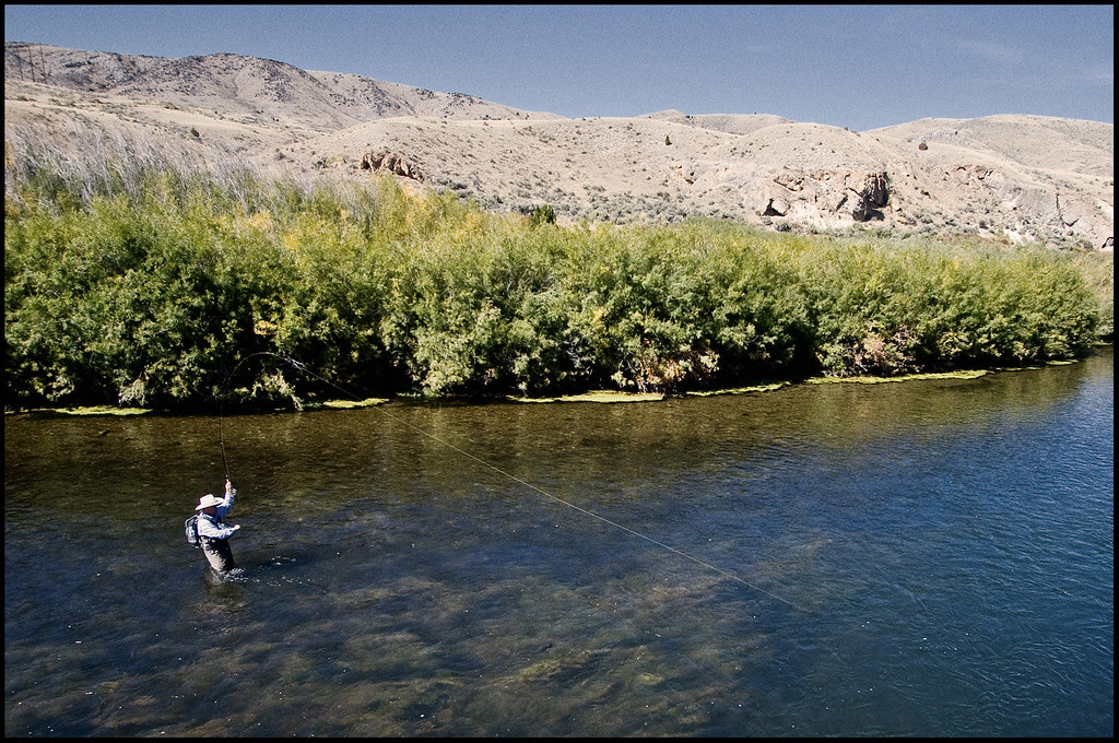 montana fly fishing beaverhead river published in catc