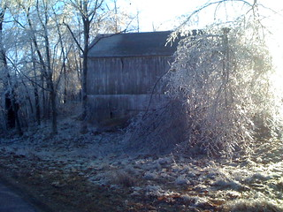 December 2008 Ice Storm | by mncahill104