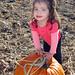 Jo & Pumpkins