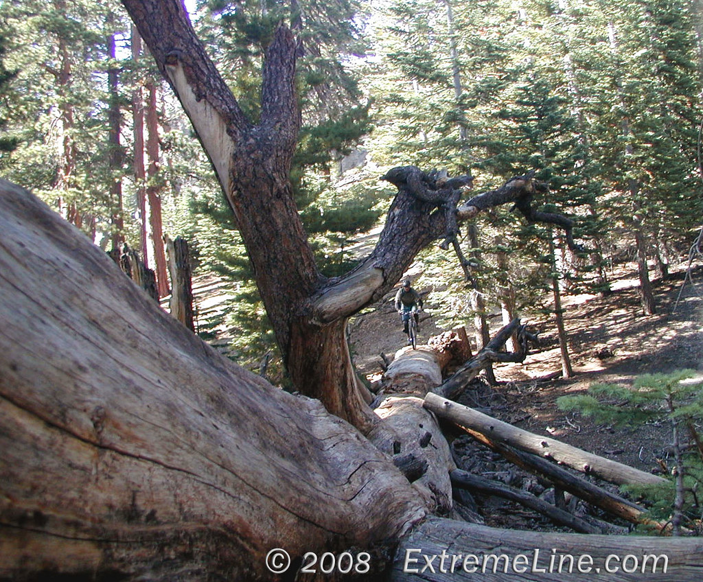 Log Ride in Mammoth | ...