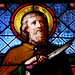 Santo Armado / Armed Saint