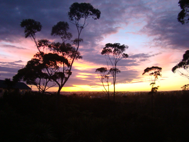 Image result for sunrise  in west auckland