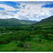Another View from Kerry