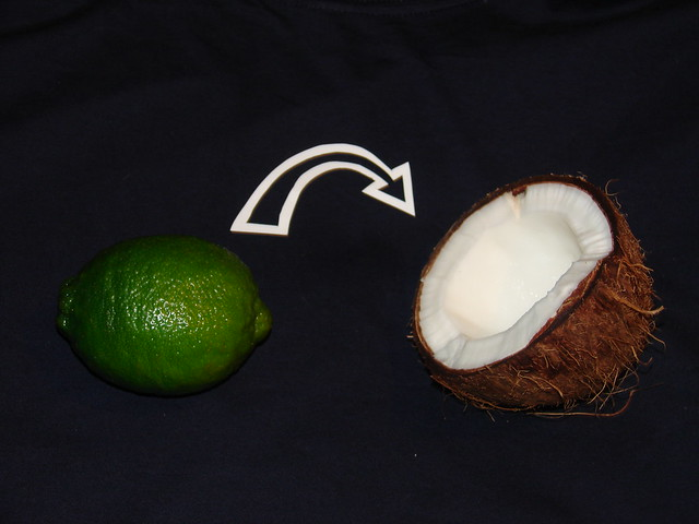 Dramatic Reenactment Of The Lime In The Coconut Shirt