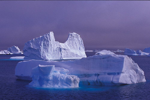Iceberg | by richard.mcmanus.