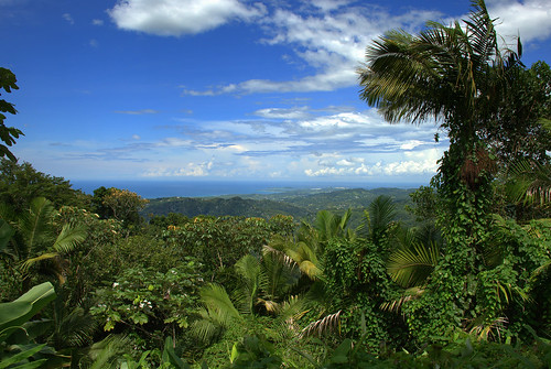 Views of the Atlantic from El Yunque | by Sushant Jadhav