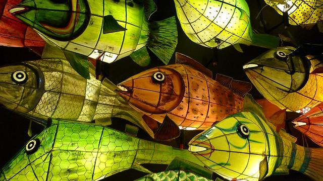 Paper fish lanterns flickr photo sharing for Paper lantern fish
