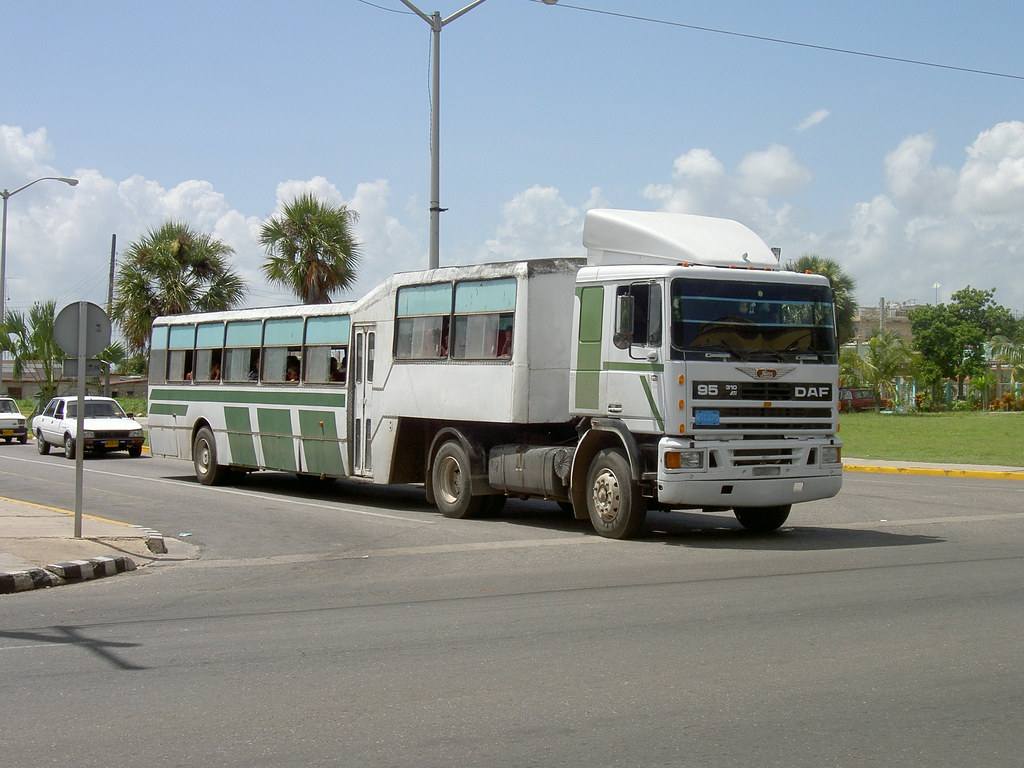 Camel Bus A Modern Incarnation Of The Camel Buses
