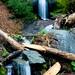 Hidden Waterfall - Sequoia National Park