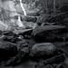 Stone Mountain Falls Mono