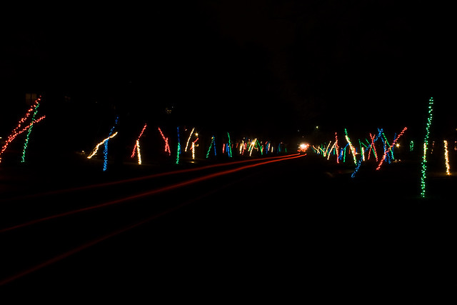 christmas lights in college hill by jwowens